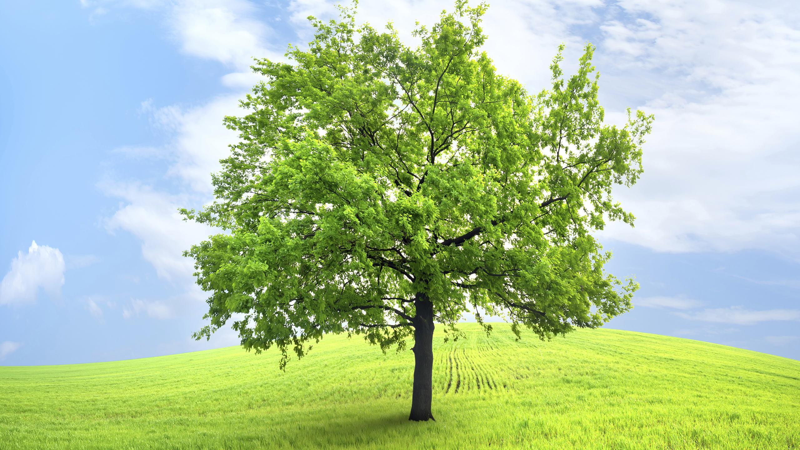 De AVK Group (h)erkent duurzaamheid als vitaal en belangrijk element